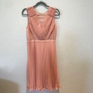 Blush BCBGmaxazria dress
